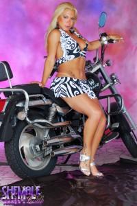 sexy tranny biker
